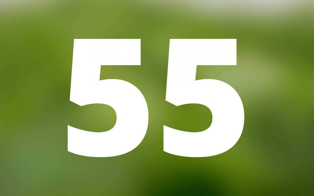 Die 55 Einsatzmöglichkeiten von Pflanzenkohle