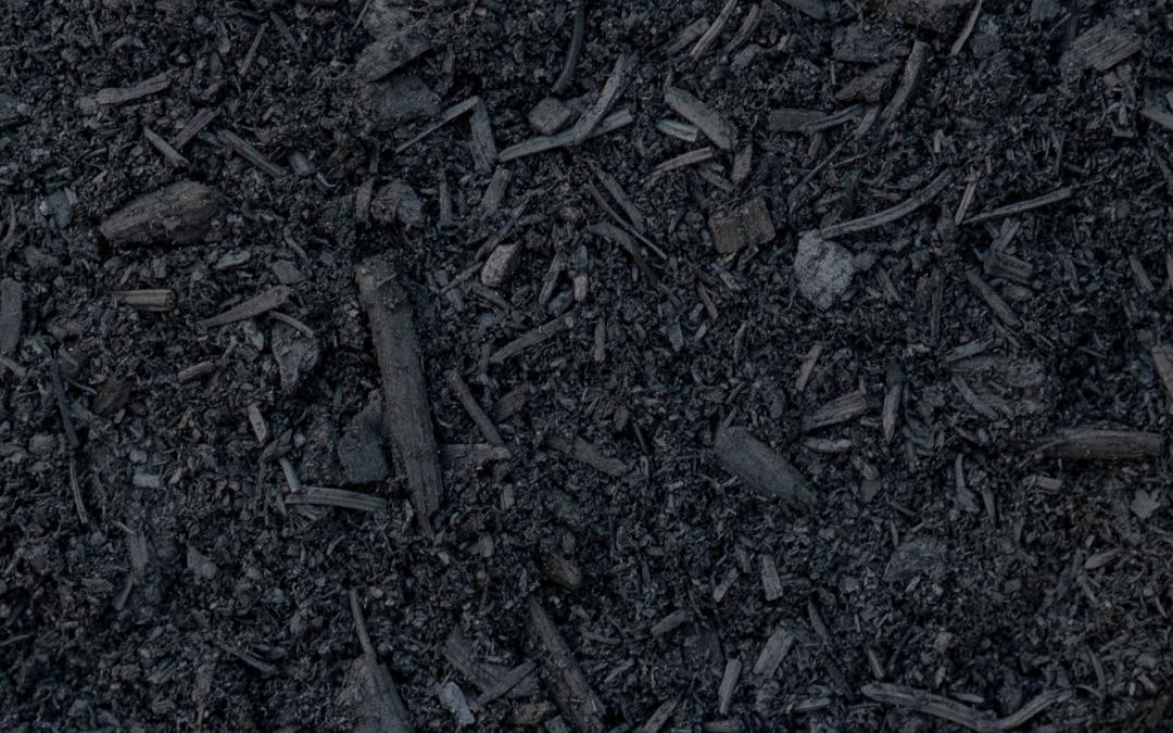 Overview of production processes for biochar (soil application)